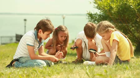 сестра : Group of children with magnifying glasses having a close look at the local fauna and flora Стоковые видеозаписи