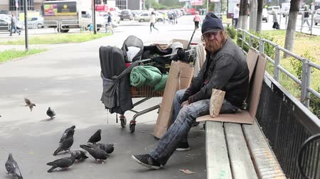 hajléktalan : City tramp sharing bread with pigeons
