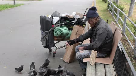 бедный : Homeless man in ragged clothes throwing bread crumbs to the pigeons