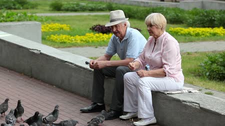 senior lifestyle : Elderly couple crumbing bread and feeding pigeons on a summer day