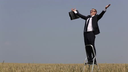 wspinaczka : Conceptual video of a victorious businessman climbing the ladder standing in the field