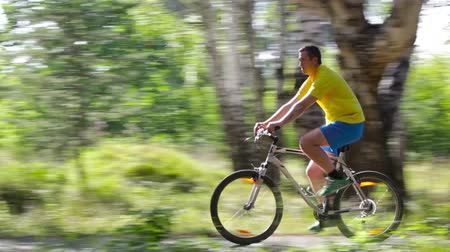 cyclists : Male cyclist following the path in the summer forest Stock Footage