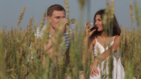 romantic couple : Happy lovers drinking wine in the open air in the fields