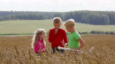 little : Older boys with new toy airplane talking to their little sister in the field