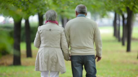 outside : Senior couple taking an unhurried walk along the park lane Stock Footage