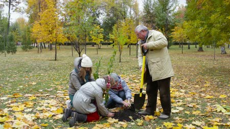 delikanlı : Grandfather, mother and two kids planting tree in the garden Stok Video