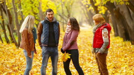 amigos : Four friends hanging out together in a picturesque autumn park