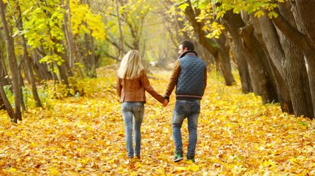 namoro : Romantic couple walking across the blanket of golden leaves in the park Stock Footage