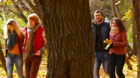 amigos : Two couples of smiling friends walking through the autumn forest Vídeos