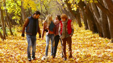 amigos : Happy friends spending their free time together in the autumn forest, guys tossing the ball