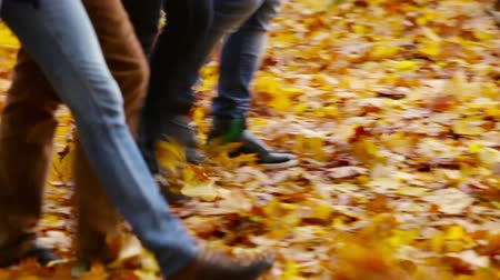 друзья : Group of young people walking in the autumn forest being ankle-deep in golden fallen leaves Стоковые видеозаписи