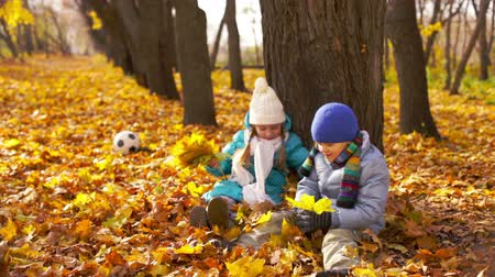 autumn : Charming kids playing in the park throwing fallen leaves at each other