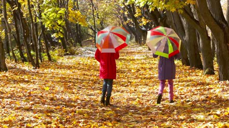 fall through : Teen girls with colorful umbrellas walking away through the golden forest