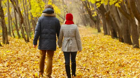 walking back : Rearview of a happy couple walking unhurriedly through the autumn forest