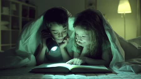 книги : Children reading one book, girl blocking vision to boy with her finger