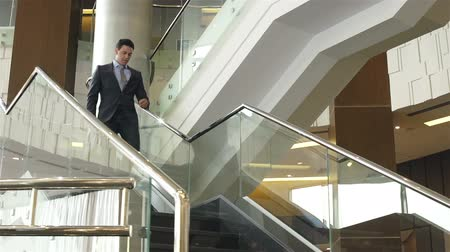 hint : Young Indian businessman with briefcase going downstairs Stok Video