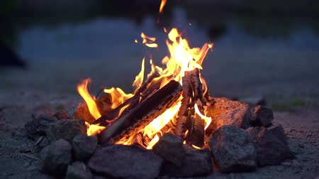 kamp ateşi : Close up of campfire burning in slow motion 200fps Stok Video