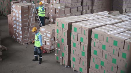 One laborer arranging boxes in piles, his co-worker transferring piles of boxes with the help of truck