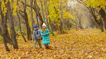 folhas : Kids approaching camera walking in park in the fall season and tossing leaves upwards in the air