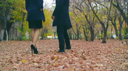 corporate affairs : Camera following colleagues walking leisurely in park Stock Footage