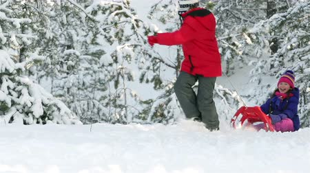 vacation : Little boy pulling sled with his sister through deep snow, girl joyously falling off the sled Stock Footage