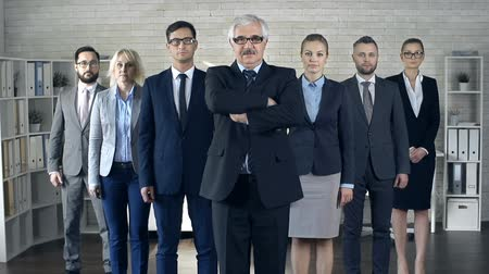 честолюбивый : Dolly in of v-formed business team of seven standing and looking straight at camera