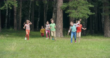 corrida : Playful kids hiding behind tree trunks and then running joyfully towards the camera