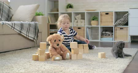 szőnyeg : Adorable little girl playing toy blocks next to teddy bear and gray kitten
