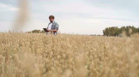 terep : Farmer standing in field of rye with digital tablet and looking around Stock mozgókép