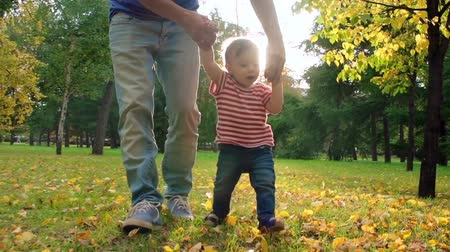 holding : Dad walking with little baby boy on golden foliage in the park in slow motion Stock Footage