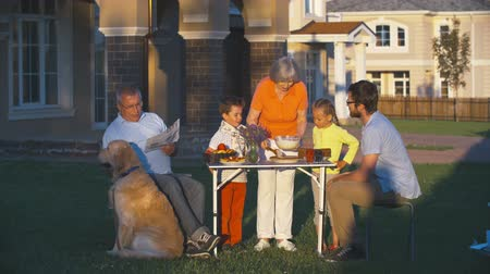 yards : Extended family spending a summer evening in front yard, a grandfather reading a newspaper and stroking a dog, a grandmother and grandchildren preparing a cake