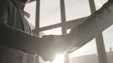 homem de negócios : Two businessmen shaking hands to greet each other and talking in office, backlit shot