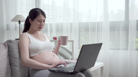Smiling pregnant woman with bare tummy using laptop sitting on sofa at home. Dostupné videozáznamy