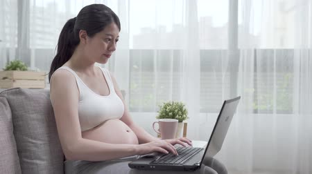 Young beautiful pregnant woman freelance working on laptop with tea at home office. Dostupné videozáznamy