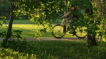 short clip : People On Bicycles Passing By The Road In Park Stock Footage