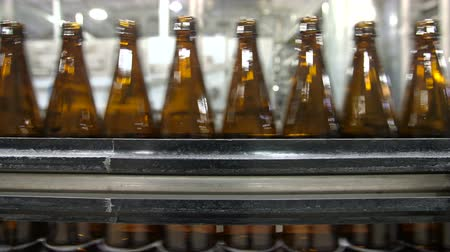 bira fabrikası : Bottles of beer go through the conveyor Stok Video