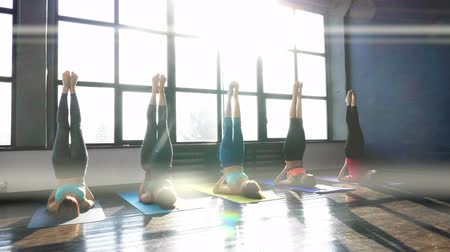 meditando : Women Stretching and Relaxing in Yoga Class