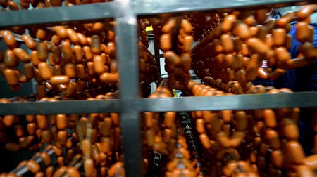 meat rolls : Industrial sausages production process at meat and sausage making plant. Meat processing equipment.
