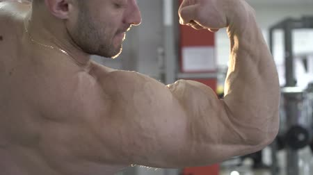 torzó : Handsome bodybuilder showing his biceps in the gym. Slowly Stock mozgókép