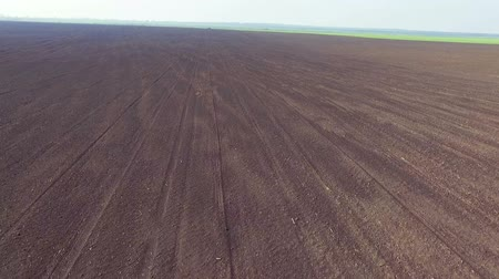 dirt : Aerial view of fields, the fertile soil, green dawning, spring day, fast moving Stock Footage