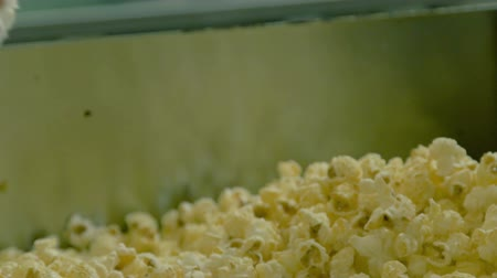 migalha : Fresh roasted popcorn putting on portions on the factory. Close up Stock Footage