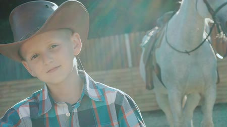 glare : Portrait of stylish little cowboy stands near purebred horse on sunlight. Slowly