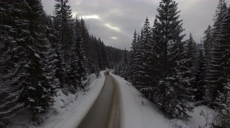 nordic countries : Car driving on winter country road in snowy forest, aerial view from drone Stock Footage