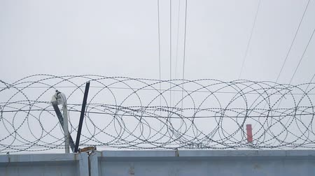 interdiction : Barbed wire on concrete fence on the background of the grey sky
