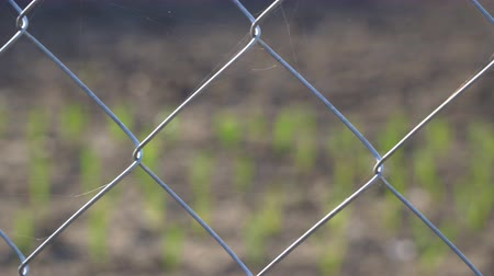 цепь : Mesh fence close up. Fence grid
