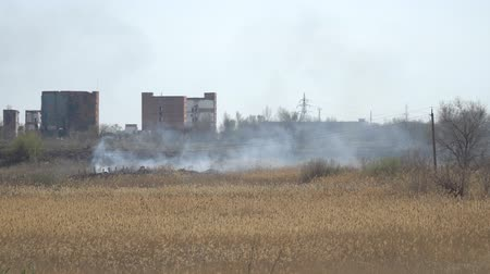fat burning : Smoke from a fire in front of factory buildings