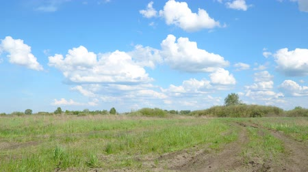 озон : Clouds over the spring green meadow. Spring landscape