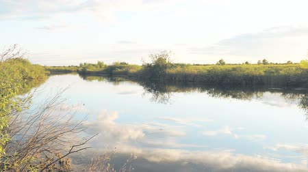 riverbank : Panorama of a small river on a Sunny day Stock Footage