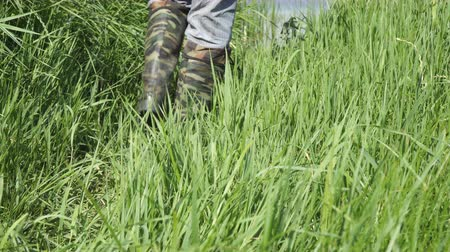 hnědožlutý : A man walks along the thick grass in khaki boots of protective color