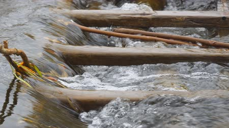 kütük : The water in the stream flows through a wooden obstacle